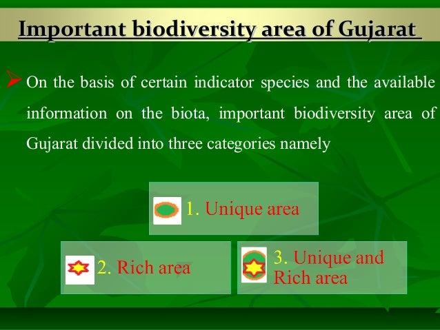 gujarat biodiversity Contents 1 preface i-ii 2 acknowledgements iii-iv 3 status of forest biodiversity in gujarat 15-72 i-indian scenario ii-biodiversity of gujarat- [plants.