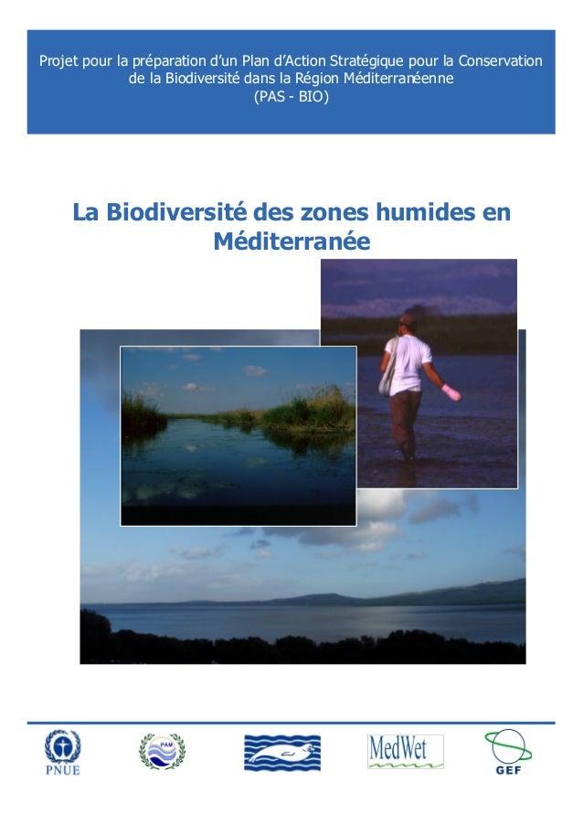 Projet pour la préparation d'un Plan d'Action Stratégique pour la Conservation de la Biodiversité dans la Région Méditerra...