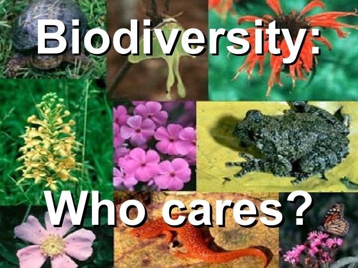Biodiversity:Who cares?