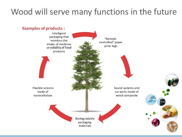 Sustainable Growth From Bioeconomy The Forest Bioeconomy