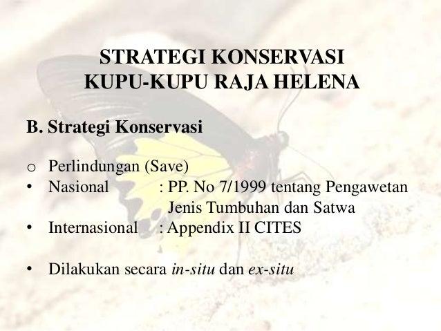 Jenis strategi perdagangan