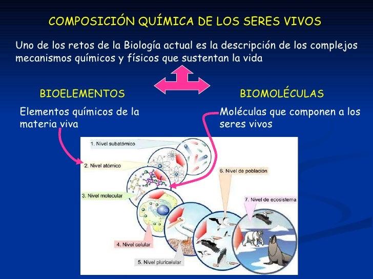 COMPOSICIÓN QUÍMICA DE LOS SERES VIVOS BIOELEMENTOS BIOMOLÉCULAS Uno de los retos de la Biología actual es la descripción ...