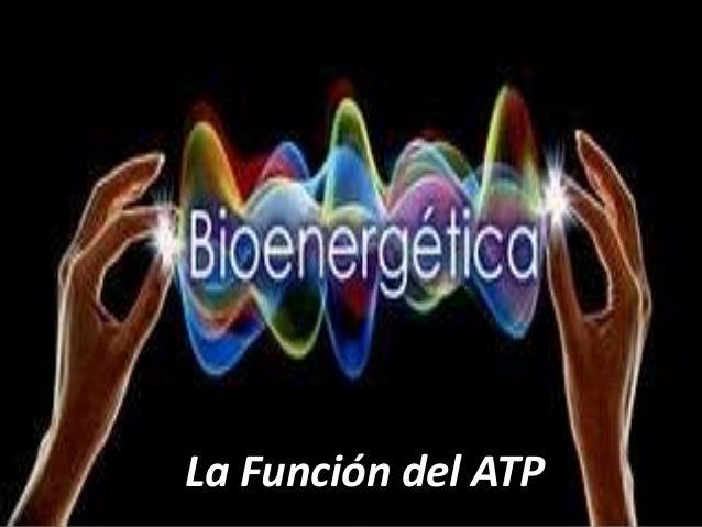 La Función del ATP