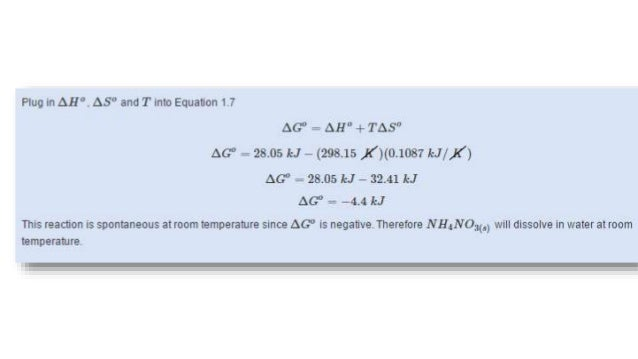 bioenergetics essay