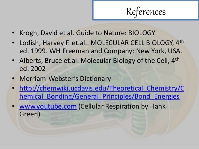 energy biology online dictionary autos post