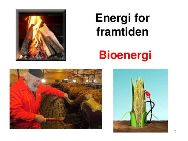 Energi forframtidenBioenergi             1