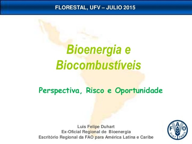 Luis Felipe Duhart Ex-Oficial Regional de Bioenergia Escritório Regional da FAO para América Latina e Caribe Bioenergia e ...