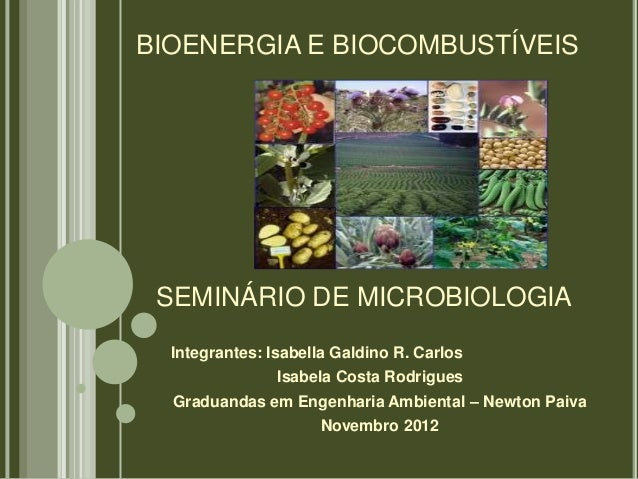 BIOENERGIA E BIOCOMBUSTÍVEIS SEMINÁRIO DE MICROBIOLOGIA  Integrantes: Isabella Galdino R. Carlos                Isabela Co...