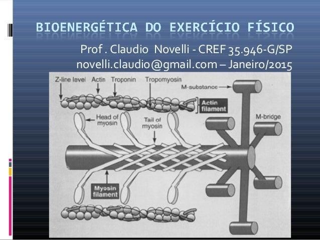 Prof . Claudio Novelli - CREF 35.946-G/SP novelli.claudio@gmail.com – Janeiro/2015