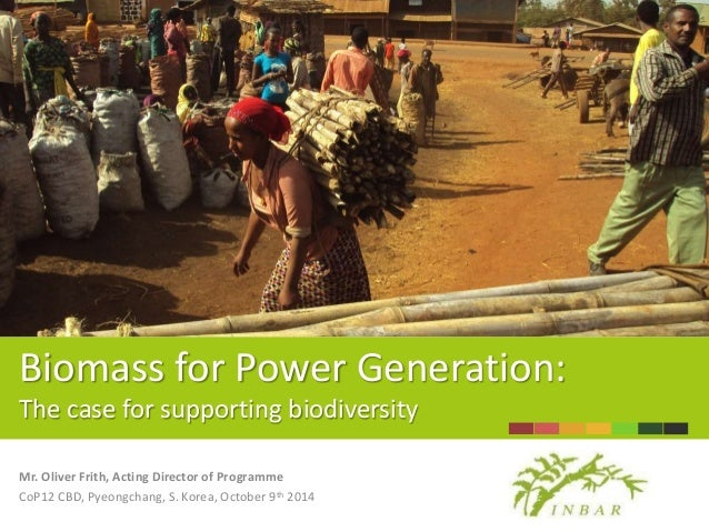 Biomass for Power Generation:  The case for supporting biodiversity  Mr. Oliver Frith, Acting Director of Programme  CoP12...