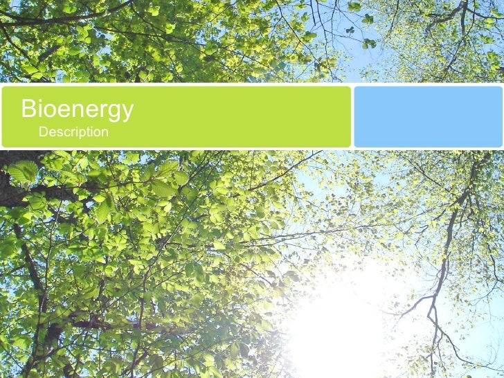 Bioenergy Description