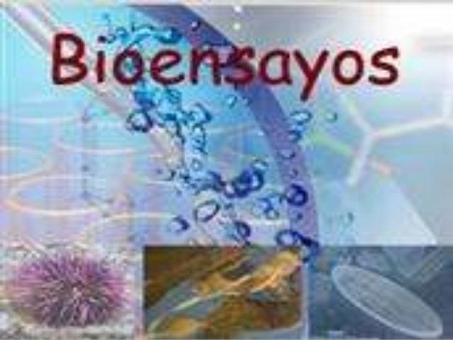  Los Bioensayos son experimentos que se realizan bajo condiciones controladas de laboratorio con el propósito de evaluar ...