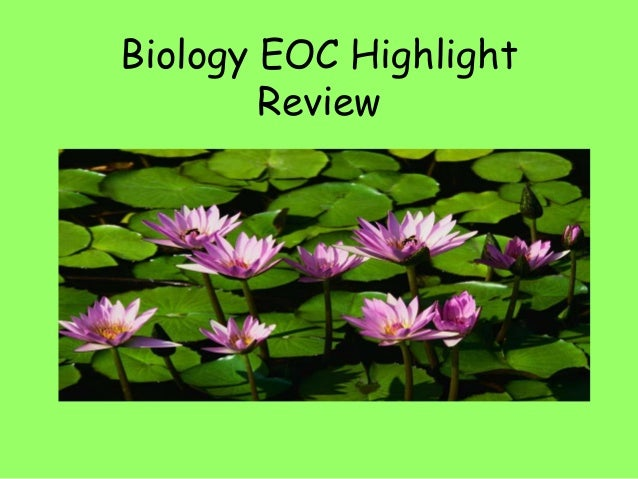 Biology EOC Highlight Review