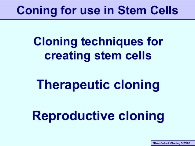 Stem Cells & Cloning 3/23/05 Coning for use in Stem Cells Cloning techniques for creating stem cells Therapeutic cloning R...