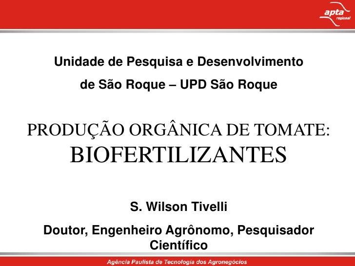 Unidade de Pesquisa e Desenvolvimento <br />de São Roque – UPD São Roque<br />PRODUÇÃO ORGÂNICA DE TOMATE: BIOFERTILIZANTE...