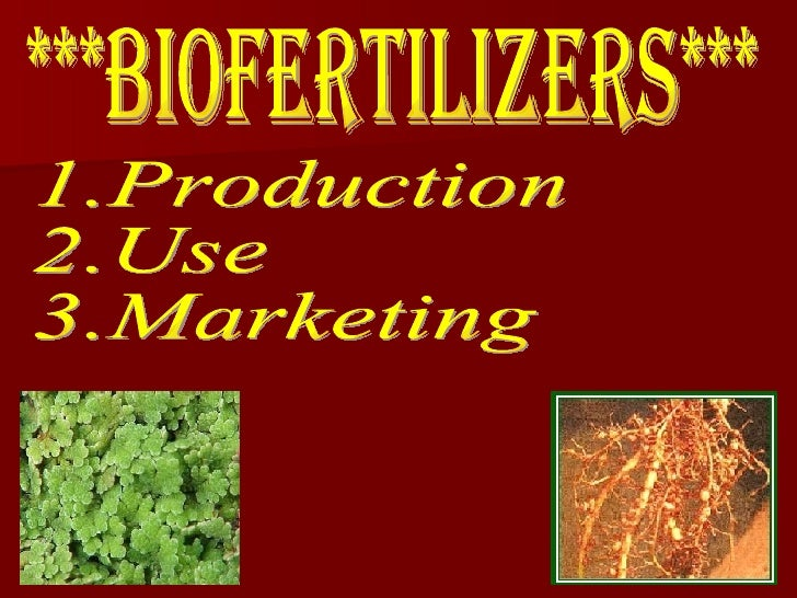 ***BIOFERTILIZERS*** 1.Production 2.Use 3.Marketing