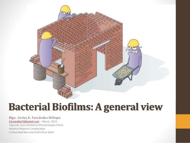 Bacterial Biofilms: A general view Blgo. Carlos A. Fernández Miñope FernandezC4@gmail.com – Marzo, 2014 Segunda Especialid...