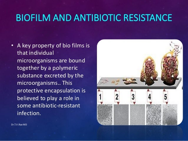 Successful treatment of biofilm infections using shock ...
