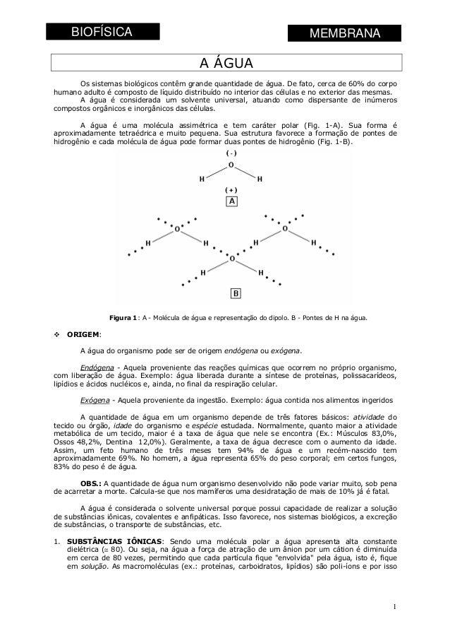 BIOFÍSICA  Profa Juliana do Valle  Fisiologia Humana - 2006  MEMBRANA  A ÁGUA Os sistemas biológicos contêm grande quantid...