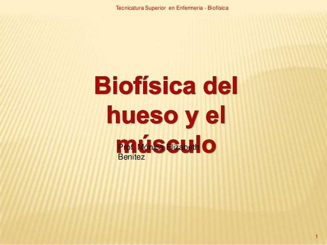 Prof. Mónica ElizabethBenitezTecnicatura Superior en Enfermeria - Biofísica1