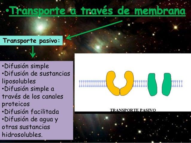 Transporte pasivo:•Difusión simple•Difusión de sustanciasliposolubles•Difusión simple através de los canalesproteicos•Difu...