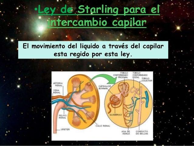 •Ley de Starling para el      intercambio capilarEl movimiento del liquido a través del capilar          esta regido por e...
