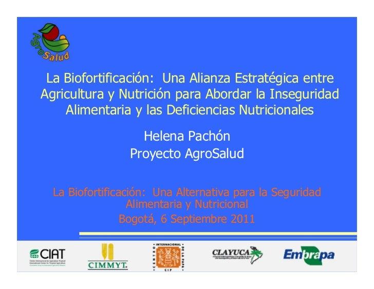 La Biofortificación: Una Alianza Estratégica entreAgricultura y Nutrición para Abordar la Inseguridad    Alimentaria y las...