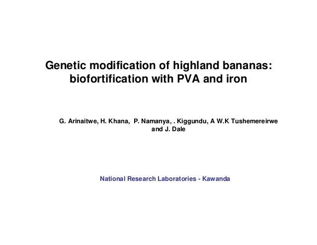 Genetic modification of highland bananas: biofortification with PVA and iron  G. Arinaitwe, H. Khana, P. Namanya, . Kiggun...