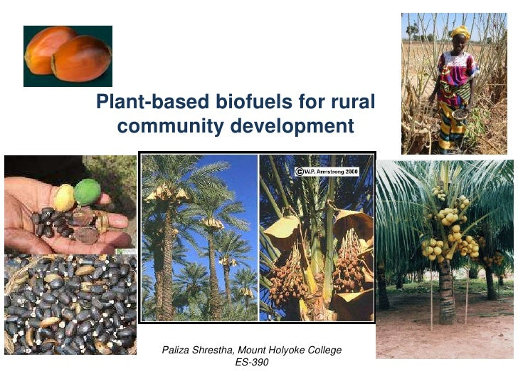 Plant-based biofuels for rural community development<br />PalizaShrestha, Mount Holyoke College<br />ES-390<br />