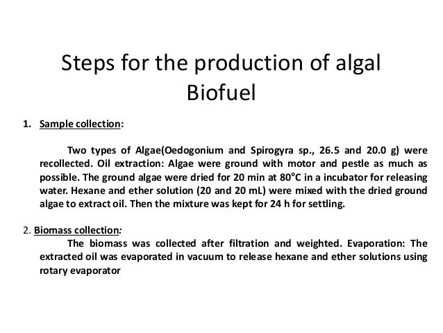 how to make fuel out of algae