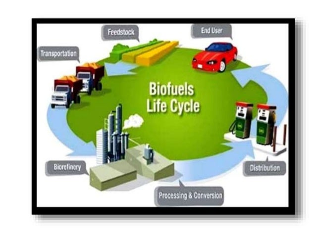 bioenergy development and its potential in Biomass resources and their bioenergy potential  from the industrial chain and its development potential in  and their bioenergy potential.