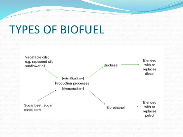 Bio Ethanol Fuel >> Biofuels future is here!