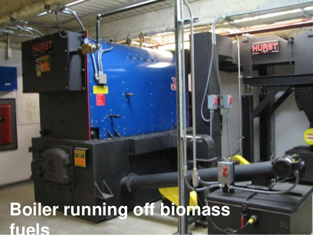 Boiler running off biomass