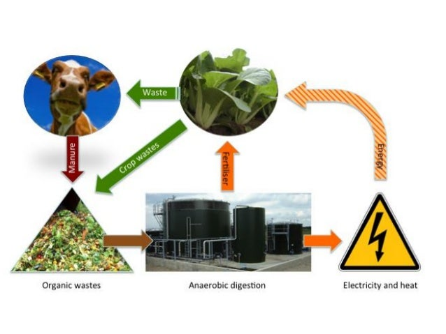 Biogas PPT Slide 3