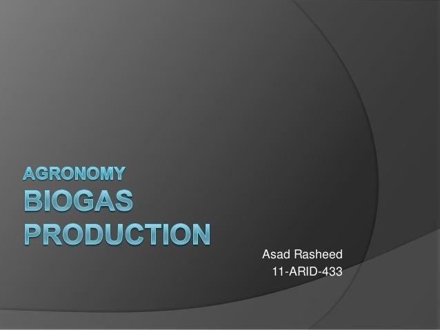 Asad Rasheed 11-ARID-433