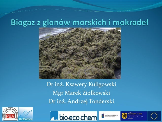 Dr inż. Ksawery Kuligowski  Mgr Marek ZiółkowskiDr inż. Andrzej Tonderski