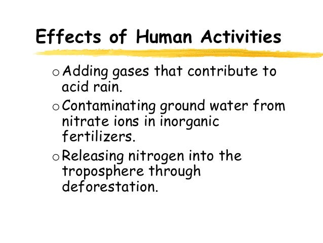 Impact of human activities on the city