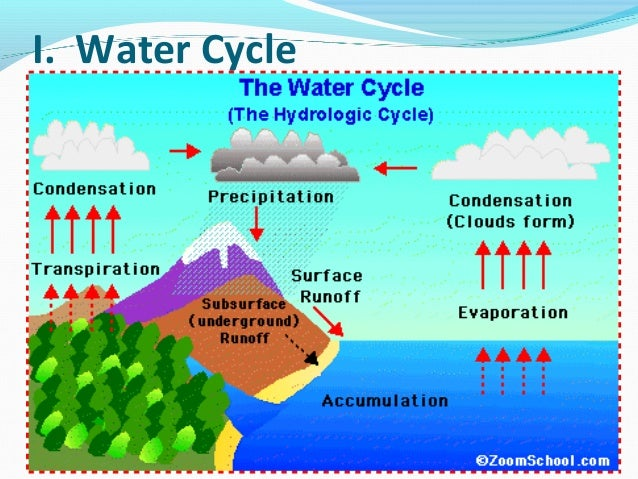 What Is The Natural Water Cycle