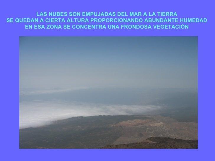 LAS NUBES SON EMPUJADAS DEL MAR A LA TIERRA SE QUEDAN A CIERTA ALTURA PROPORCIONANDO ABUNDANTE HUMEDAD EN ESA ZONA SE CONC...
