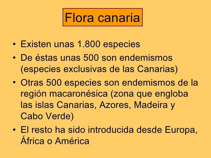 <ul><li>Existen unas 1.800 especies  </li></ul><ul><li>De éstas unas 500 son endemismos (especies exclusivas de las Canari...