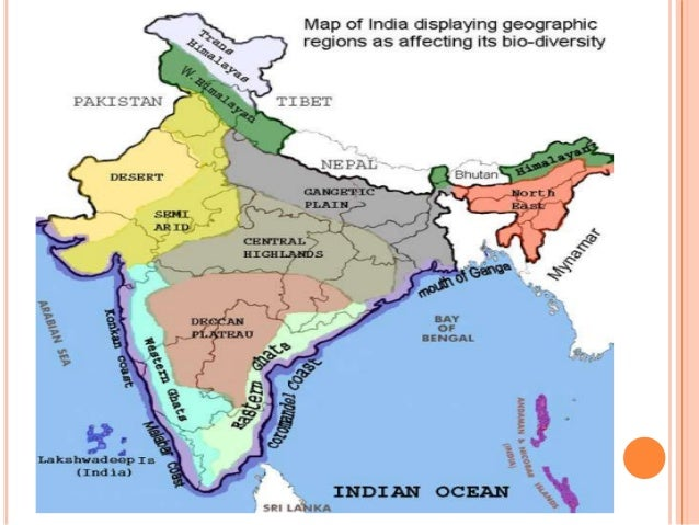 Write about biogeographical classification of india