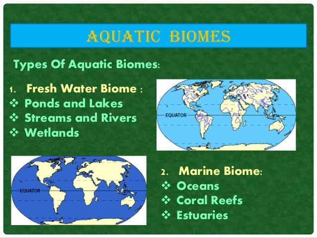 an paper on types of freshwater biomes