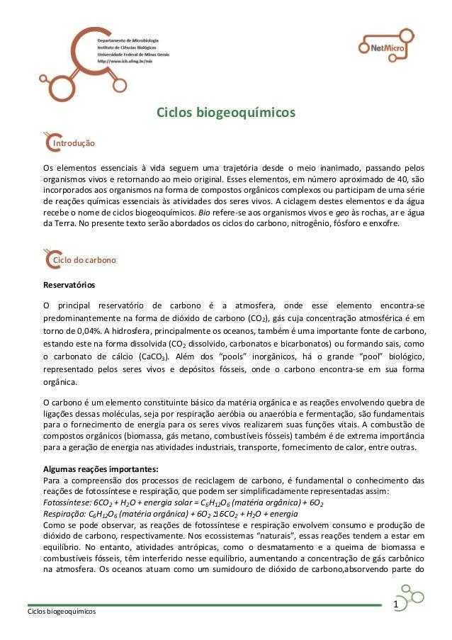 Ciclos biogeoquímicos 1 Ciclos biogeoquímicos Os elementos essenciais à vida seguem uma trajetória desde o meio inanimado,...