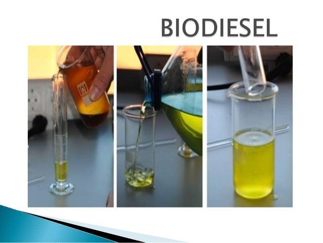 Há dezenas de espécies vegetais no Brasil dasquais se podem produzir o biodiesel, tais comomamona, dendê (palma), girassol...