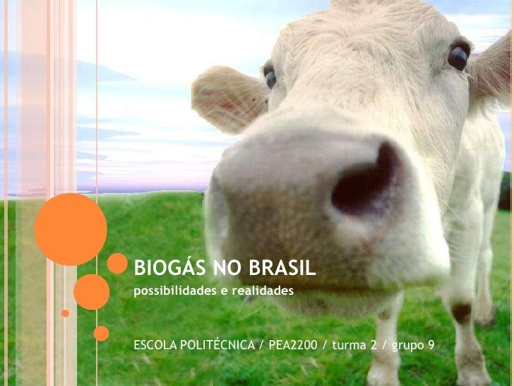 BIOGÁS NO BRASIL<br />possibilidades e realidades<br />ESCOLA POLITÉCNICA / PEA2200 / turma 2 / grupo 9<br />