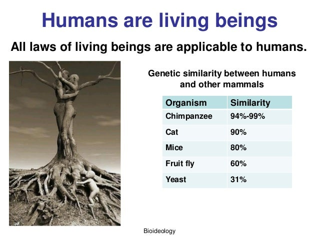 Bioideology Humans are living beings All laws of living beings are applicable to humans. Organism Similarity Chimpanzee 94...