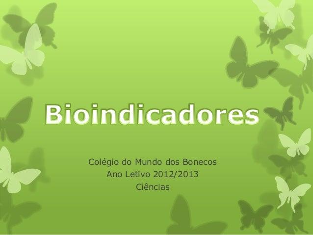 Colégio do Mundo dos Bonecos   Ano Letivo 2012/2013          Ciências