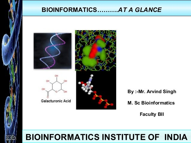 BIOINFORMATICS INSTITUTE OF INDIA BIOINFORMATICS……….AT A GLANCE By :-Mr. Arvind Singh M. Sc Bioinformatics Faculty BII