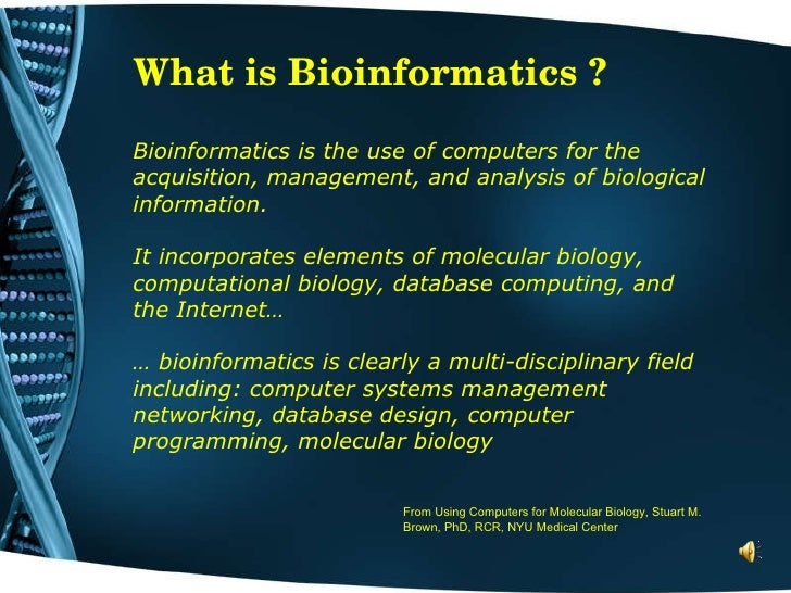 Study bioinformatics in europe