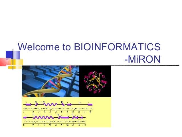 Welcome to BIOINFORMATICS                   -MiRON